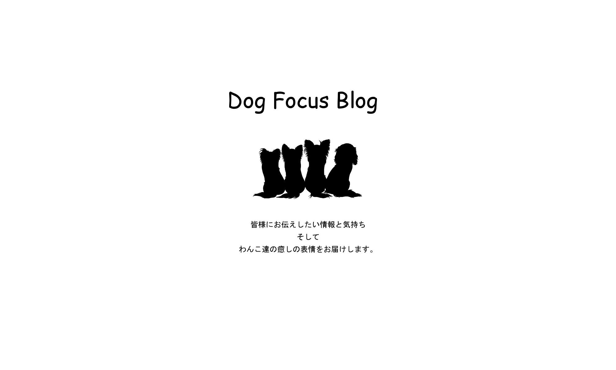 Dog Focus blog