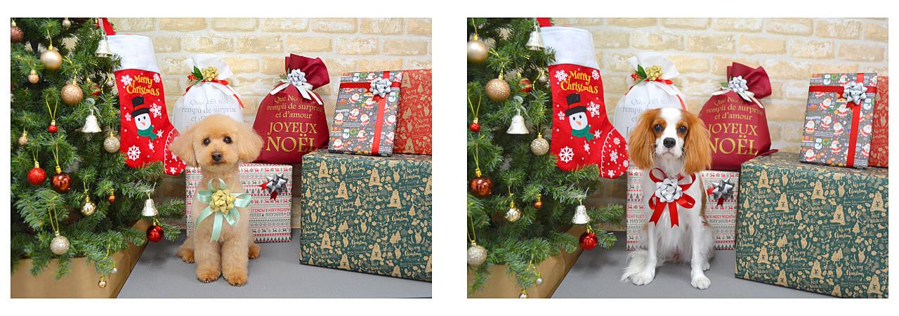 Christmasslide10.jpg
