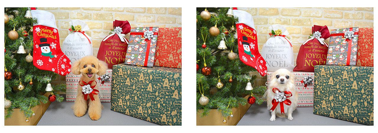 Christmasslide12.jpg