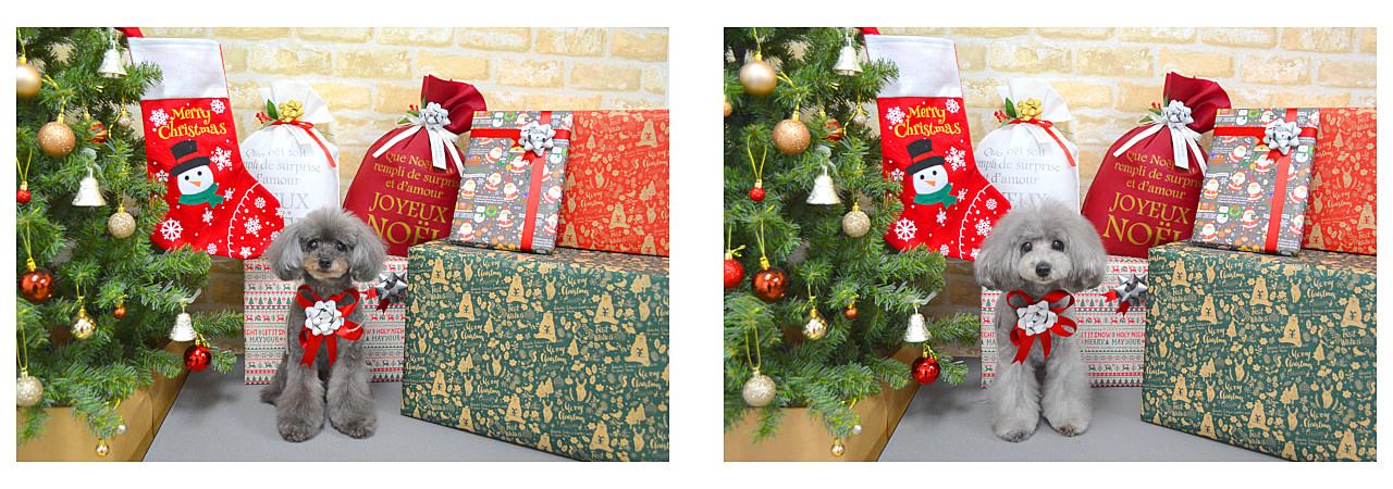 Christmasslide15.jpg