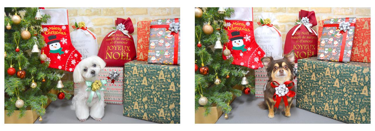 Christmasslide18.jpg