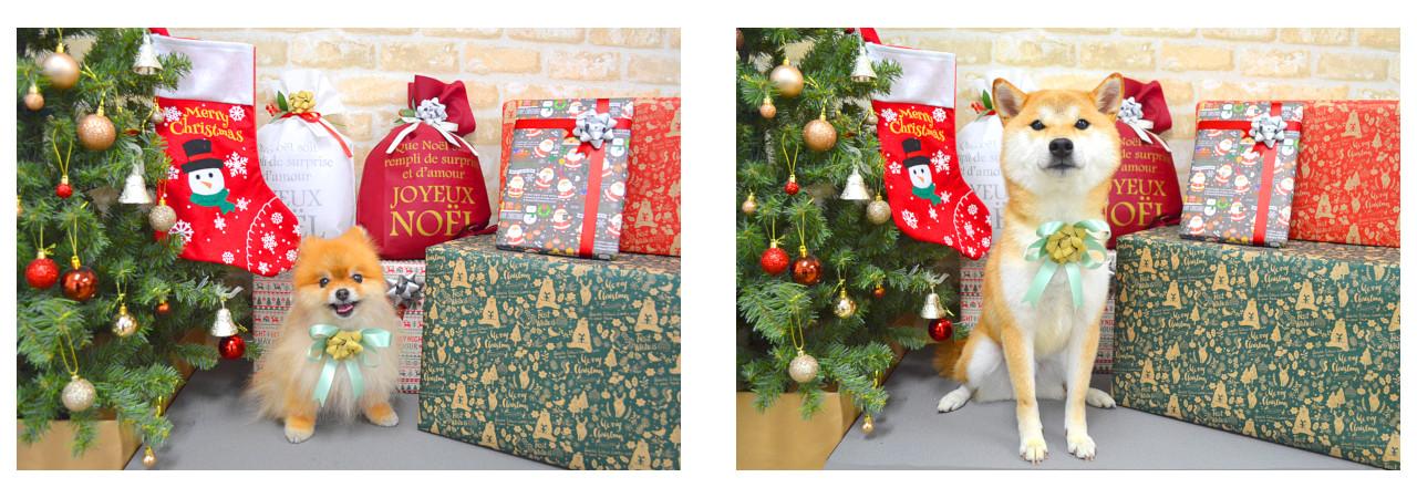 Christmasslide21.jpg