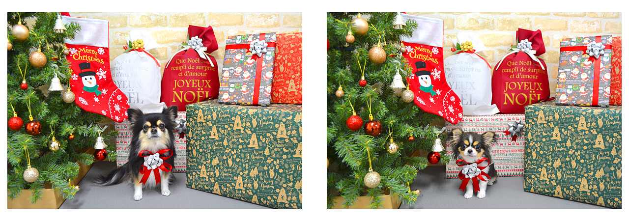 Christmasslide26.jpg