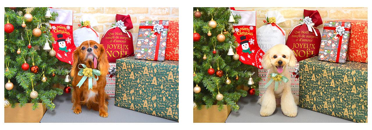Christmasslide27.jpg