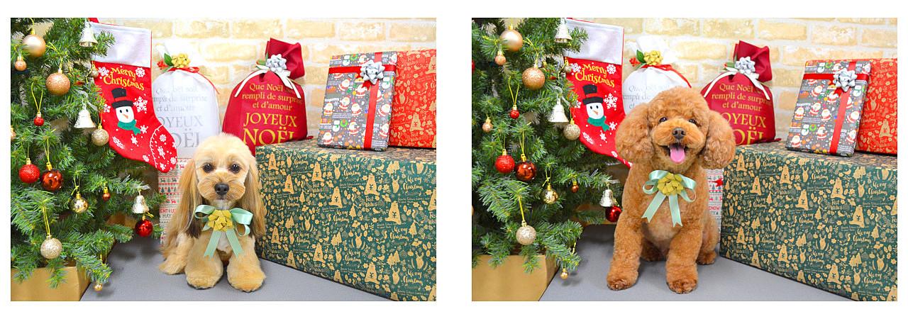 Christmasslide31.jpg