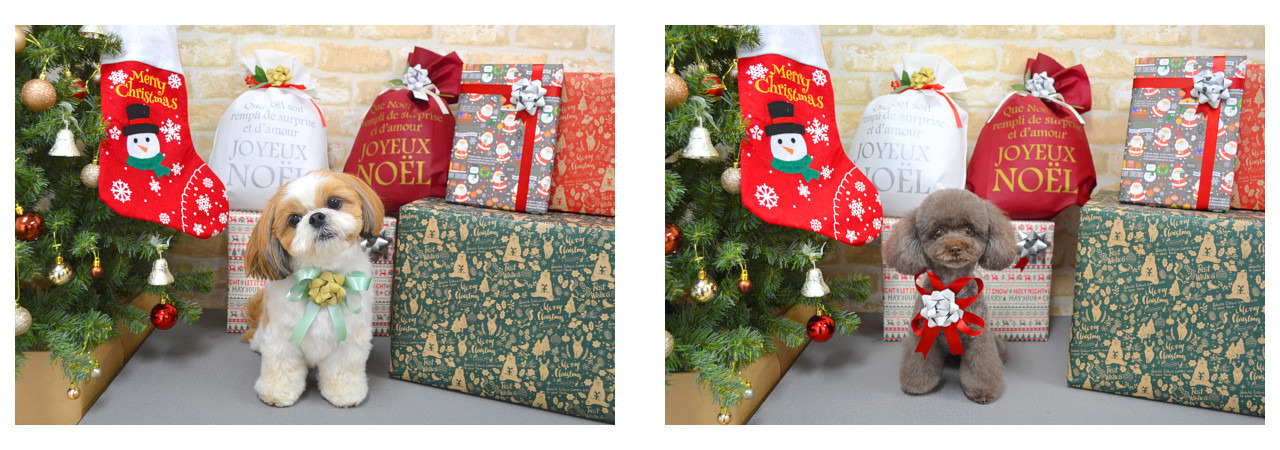 Christmasslide5.jpg