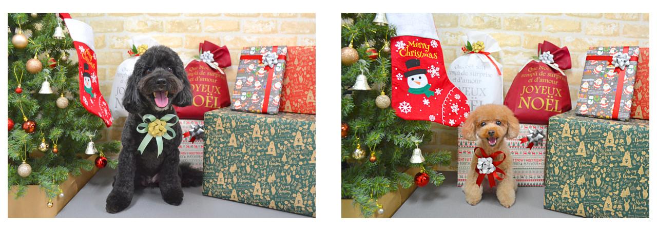 Christmasslide7.jpg