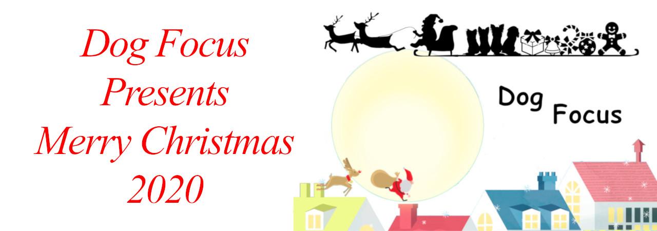 Christmasslide.jpg