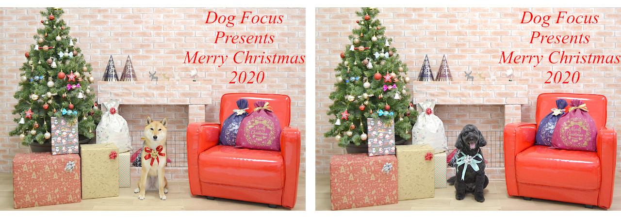 Christmasslide1.jpg