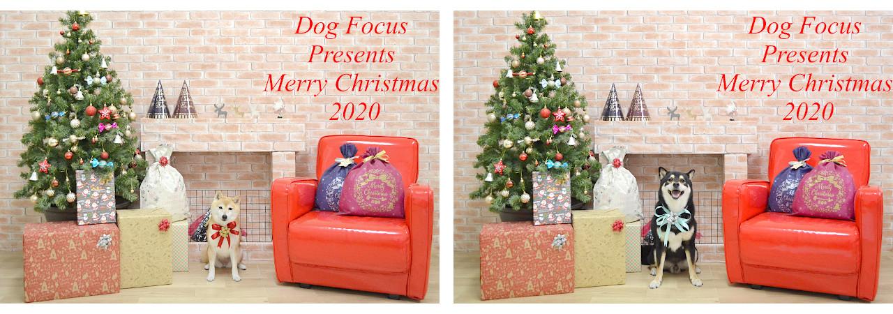 Christmasslide2.jpg