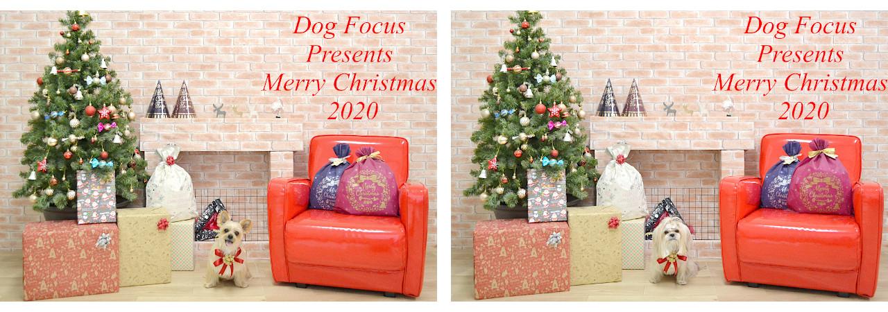 Christmasslide4.jpg